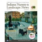 The Hardscape Issue