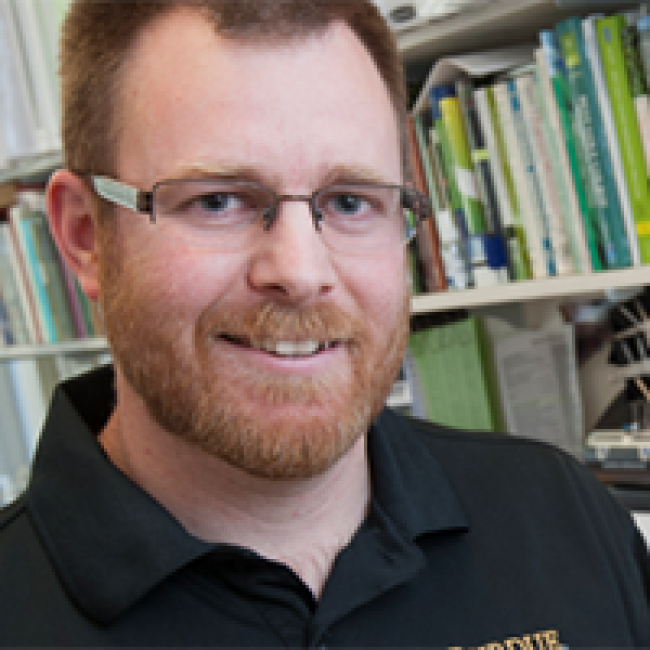 HLA professor earns distinguished fellowship